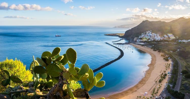 Vuelos a Tenerife desde Península Ida + Vuelta 9€