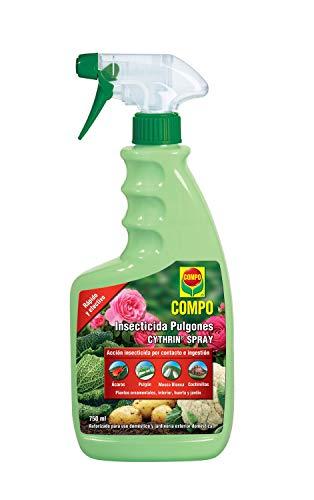 Compo Cythrin spray insecticida pulgon, para ornamentales, 750ml