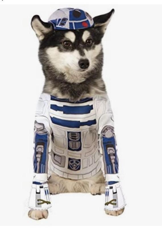 Mini reco disfraces para mascotas molones