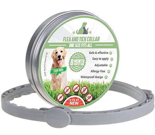 Collar Antiparasitos para Perro y gatos, contra Pulgas, Garrapatas y Mosquitos, 8 Meses.