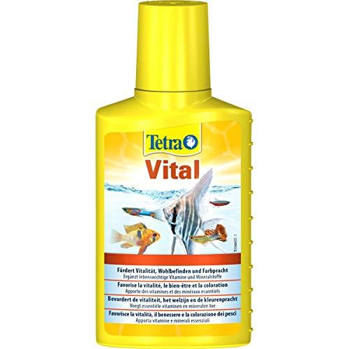 Tetra vital coloracion y vitalidad peces, 100ml