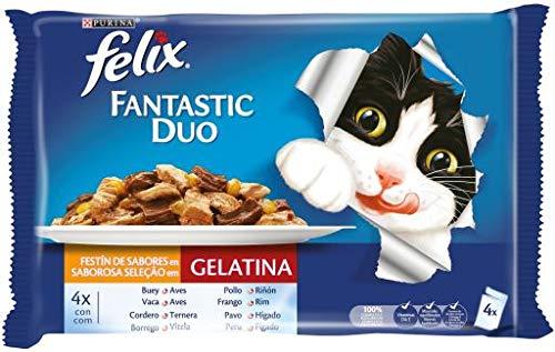 Purina Félix carne 10 (4 x 100) gatos