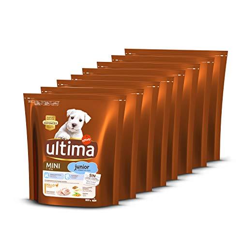Ultima Perros Mini Junior con Pollo, 8 x 800g