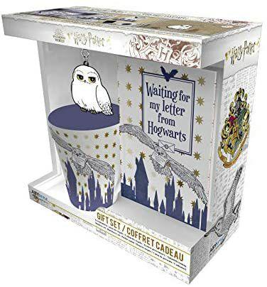 Harry Potter – Caja regalo – Taza 250 ml + llavero + cuaderno Hedwige