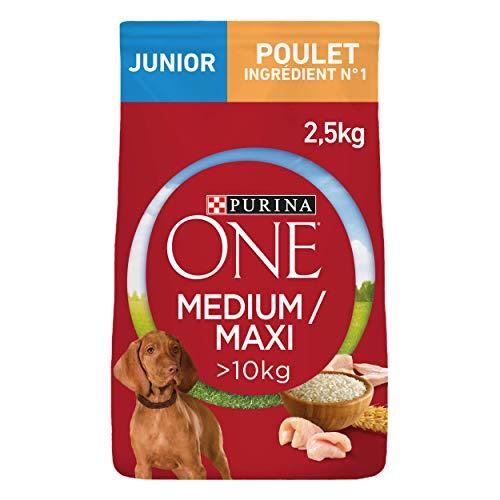 Purina one medium/maxi junio pollo perros, 4 x 2'5kg