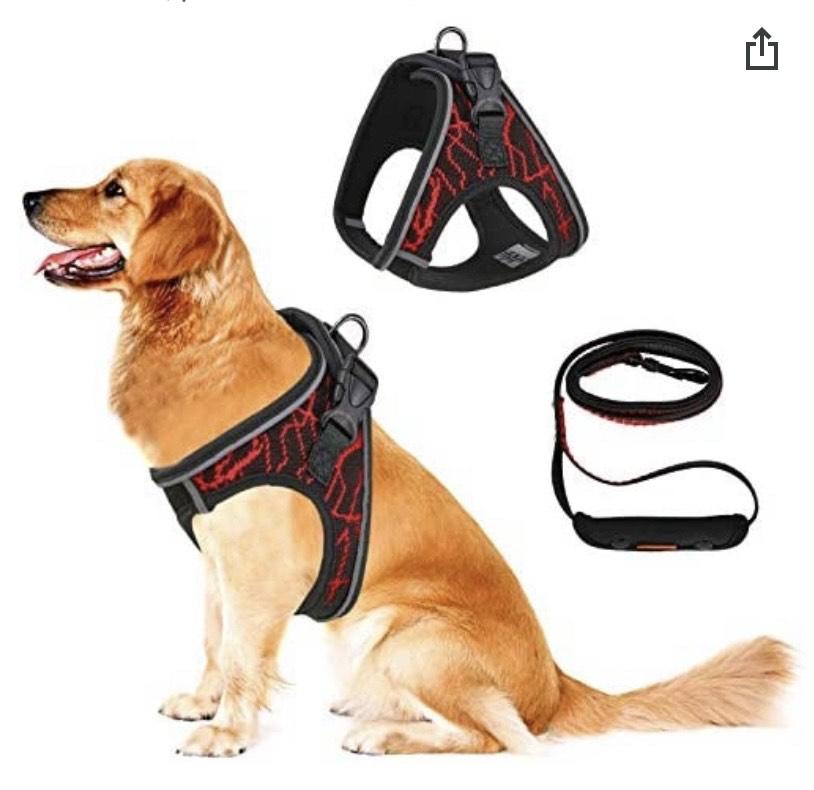 Arnés ajustable para mascotas con Correa (cuello: 32 – 37 cm, pecho: 35 – 42 cm