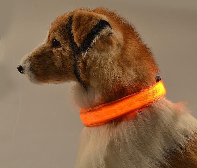 Collar LED para perros