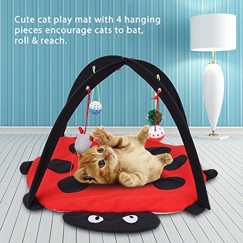 Juguete alfombra para gatos
