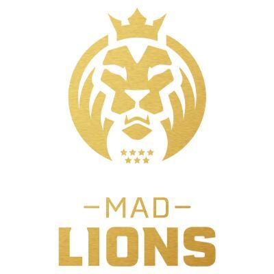15% en toda la MAD Lions Shop