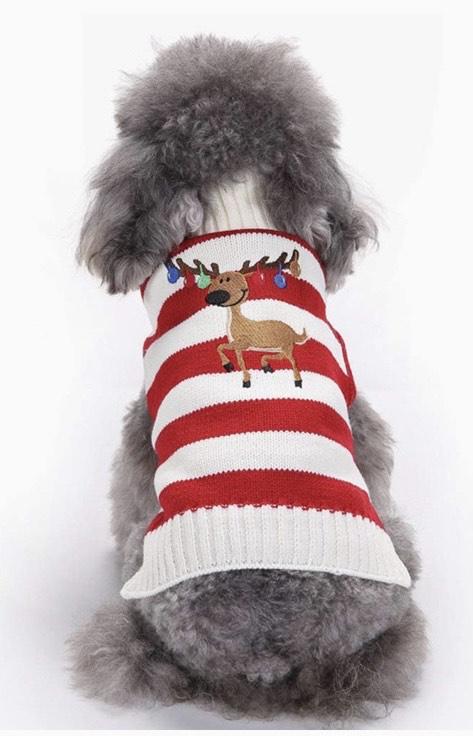 Suéter de animal no identificado para mascota