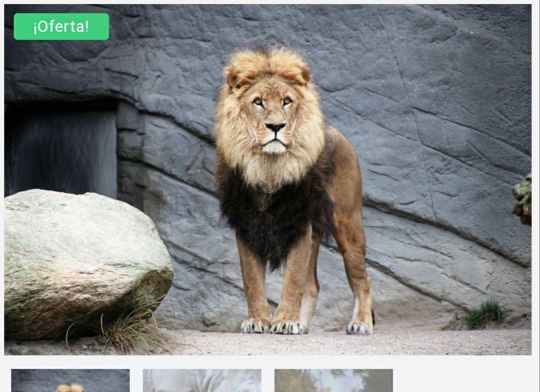 2×1 Zoo Terra Natura Benidorm