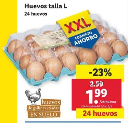 24 huevos talla L