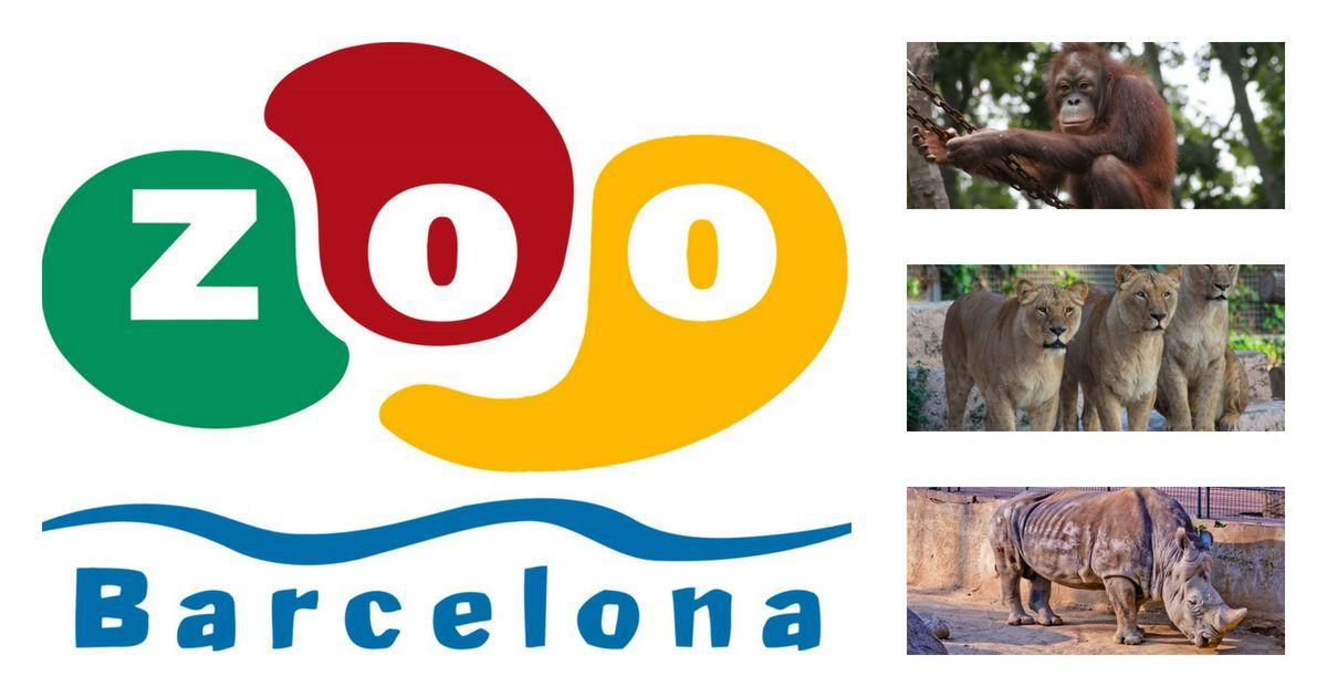 DESCUENTO de 43€ en pase FAMILIAR al Zoo de Barcelona