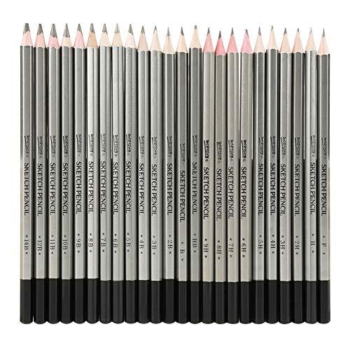 Juego de lápices de bocetos profesionales de 24 piezas.