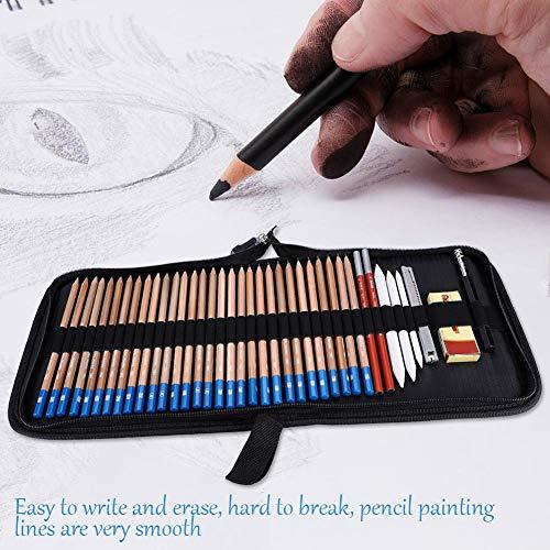 Set de lápices de bocetos profesionales con borrador, lápices de carbón y estuche con cremallera.
