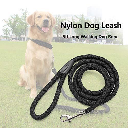 Correa para Perro de Nylon con Broche de Metal de tracción, color Negro