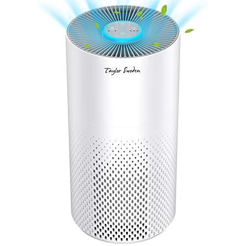 Purificador de aire para hogar con filtro HEPA H13 y carbón activado