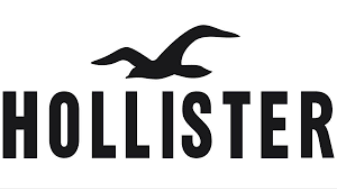 -15% Hollister