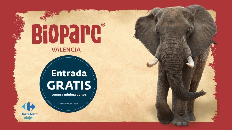 Entrada Gratis a Bioparc Valencia al comprar +30€ en Carrefour