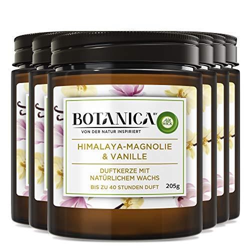 Botanica by Air Wick Vela aromática – magnolia del Himalaya y vainilla – 6 unidades