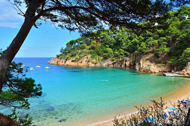 Primera línea en la Costa Brava Port de la Selva: 3 noches en hotel 3* con desayunos + SPA +Cancela gratis y paga en hotel (PxPm2)