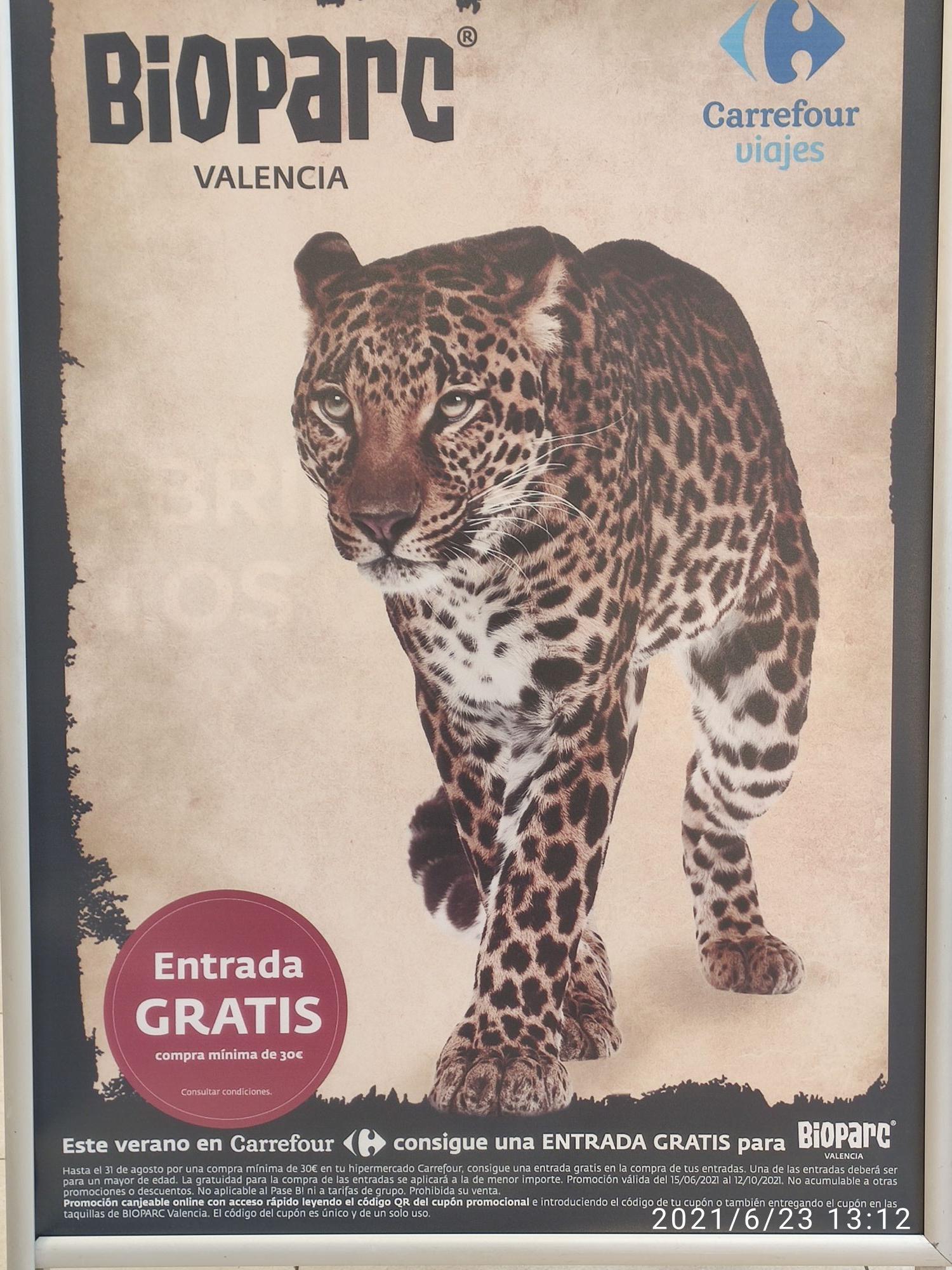 2x1 en Bioparc Valencia