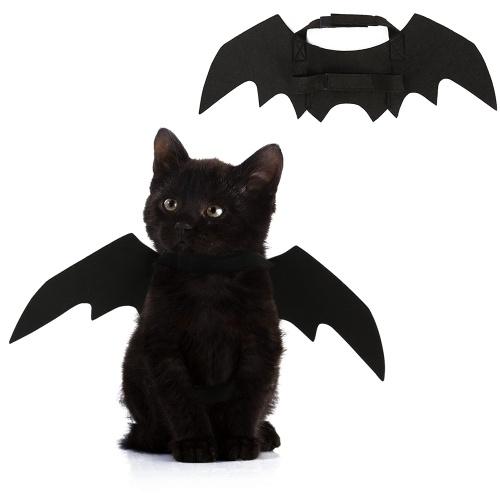Alas de murciélago para gatito