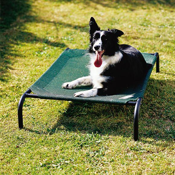 Cama para perro elevada (Tamaño decente 0,65 × 1,10 m)