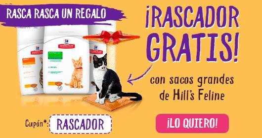 RASCADOR GATOS GRATIS