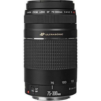 Canon EF 75-300mm f/4-5.6 III Lente