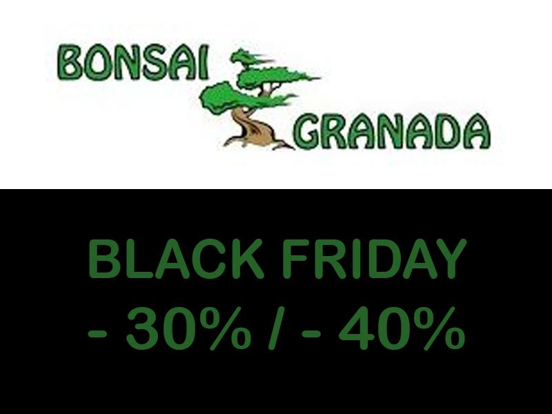 30% descuento en casi toda la tienda Bonsai Granada