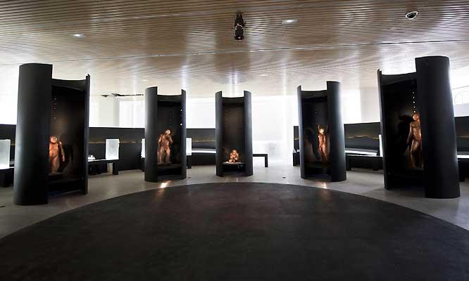 Espectacular Entrada Gratuita Museo de la Evolución Humana en Burgos